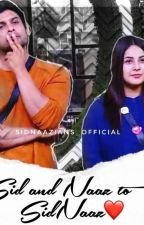 Sid And Naaz To Sidnaaz by sidnaazians_official