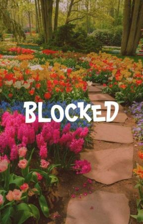 blocked. by seoultwix