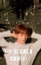 My Secret Crush // Choi Beomgyu by itznikki19