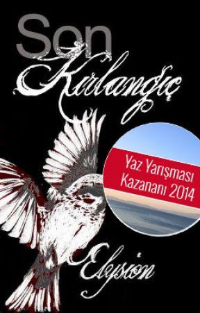 Son Kırlangıç by Elysion