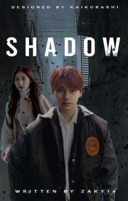SHADOW- Chaeryeong x Male Reader