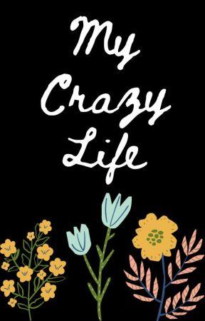 My Crazy Life by mightycake