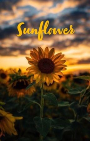 Sunflower by Spicy_Bagels