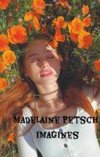 Madelaine Petsch Imagines (gxg) by gayforddlovato