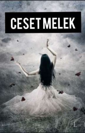 Ceset Melek by gu1narr