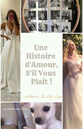 Une histoire d'amour, s'il vous plaît ! by Elevatorious