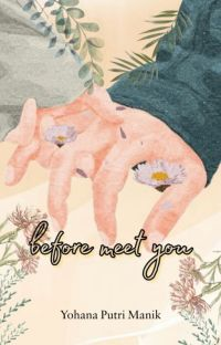 Before Meet You [Revisi] cover