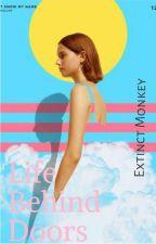 Life Behind Doors by ExtinctMonkey