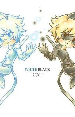 Đọc truyện [MLB FANFIC ONESHORT] WhiteBlack Cat