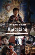stargazing - peter parker x reader by tomhollandquackson