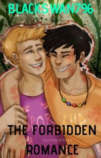 The Forbidden Romance✓ cover