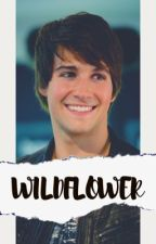 WILDFLOWER▔big time rush  by SavannahBrookeFrisby