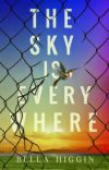 The Sky is Everywhere cover