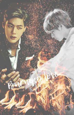 Burning Love by loveoftaejin