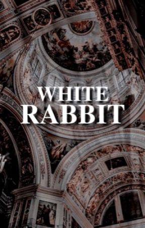 𝐖𝐇𝐈𝐓𝐄 𝐑𝐀𝐁𝐁𝐈𝐓 by whitercbbit