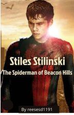 Stiles Stilinski, Spider-man of Beacon Hills by reesesd1191
