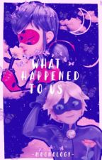 What Happened To Us《A Miraculous Fanfiction》 by rxselight_moon