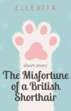 The Misfortune of a British Shorthair (one-shot story) by ellexiaa