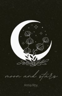 We own the moon and the stars  cover