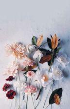 Feelings On Paper by AlissaWolf