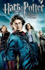 Life as Harry Potter's Twin Sister Goblet of Fire by AngelHopeWrites