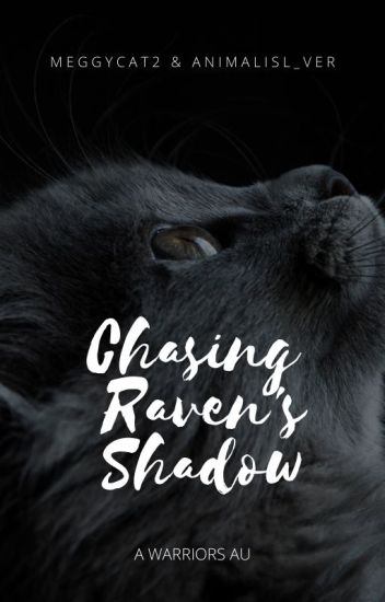 Chasing Raven's Shadow
