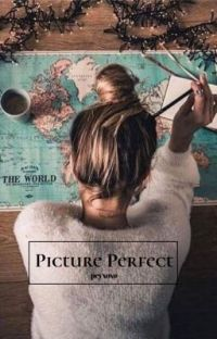 Picture Perfect (✔️) cover
