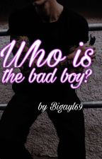 ♡Who is the bad boy?♡{COMPLETE} by bigayl69
