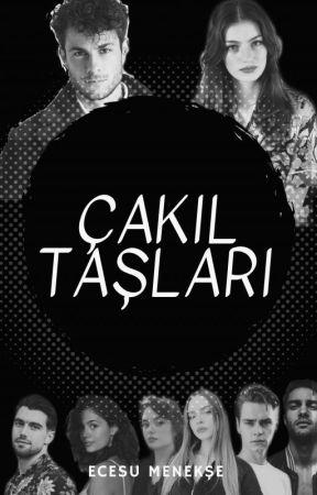 ÇAKIL TAŞLARI by _ecyms