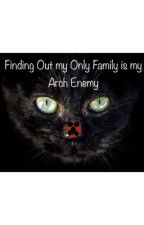 Finding Out My Only Family Is My Arch Enemy (A Miraculous Fanfiction) by PurrincessLB
