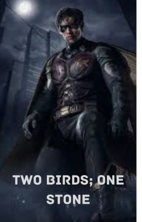 Two Birds; One Stone (Titans Dick Grayson Fanfiction) by oboegirl123