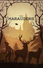 Marauders Mate (being edited) by Starwind808