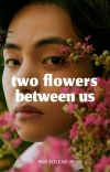 Two Flowers Between Us   𝒕𝒌  cover
