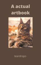 an actual artbook by teardropz-