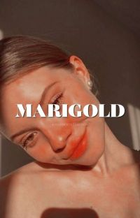 MARIGOLD ━ RON WEASLEY  cover