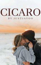 Cicaro by JustJayoo