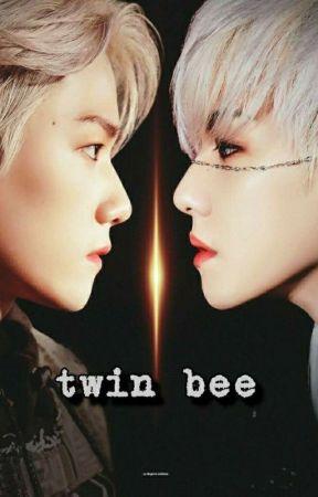 twin bee by AyiAyi913