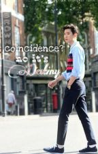 Coincidence? No It's Destiny by kokobophoe