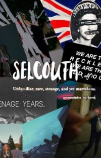 SELCOUTH // The Inbetweeners x Reader cover