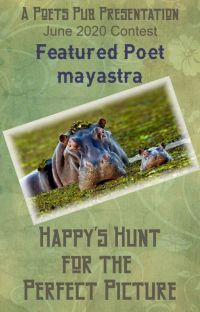 Happy's Hunt for the Perfect Picture cover