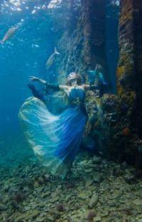 Merformers: An Aquatic Romance cover