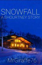 Snowfall // Shourtney by MrGiraffe76