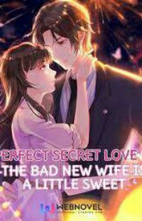 Perfect Secret Love : The Bad New Wife Is A Little Sweet cover