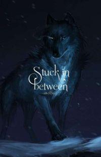 Stuck in Between (BxBxB) cover