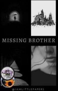 Missing Brother | ˢˡᵒʷ ᵘᵖᵈᵃᵗᵉ cover