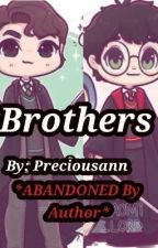 Brothers *ABANDONED By Author* by GottaGoPark