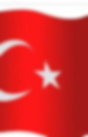 ŞİİRLERİM  by selfinaz52