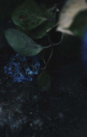 𝐤𝐚𝐥𝐨𝐩𝐬𝐢𝐚 | 𝐯𝐞𝐧𝐭𝐢 𝐱 𝐫𝐞𝐚𝐝𝐞𝐫 | by cxrramel_kisses