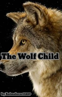 The Wolf Child (An Avengers fanfiction) Being Edited  cover