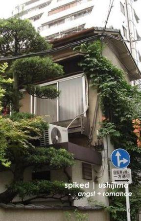 𝐒𝐏𝐈𝐊𝐄𝐃. ushijima [ ✓ ] by sintenima
